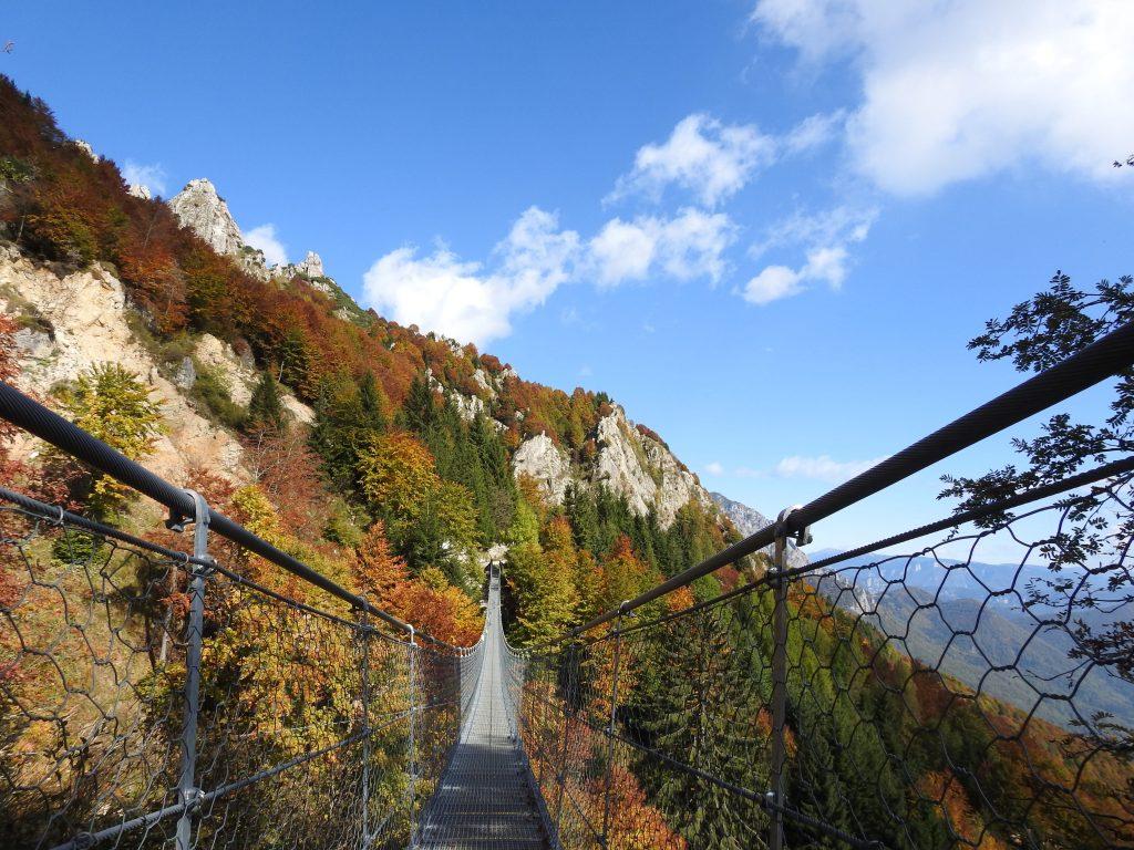 ponte tibetano in autunno