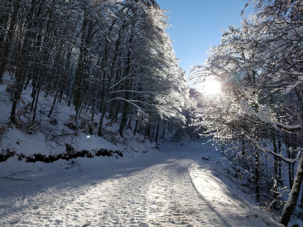 strada di campogrosso innevata