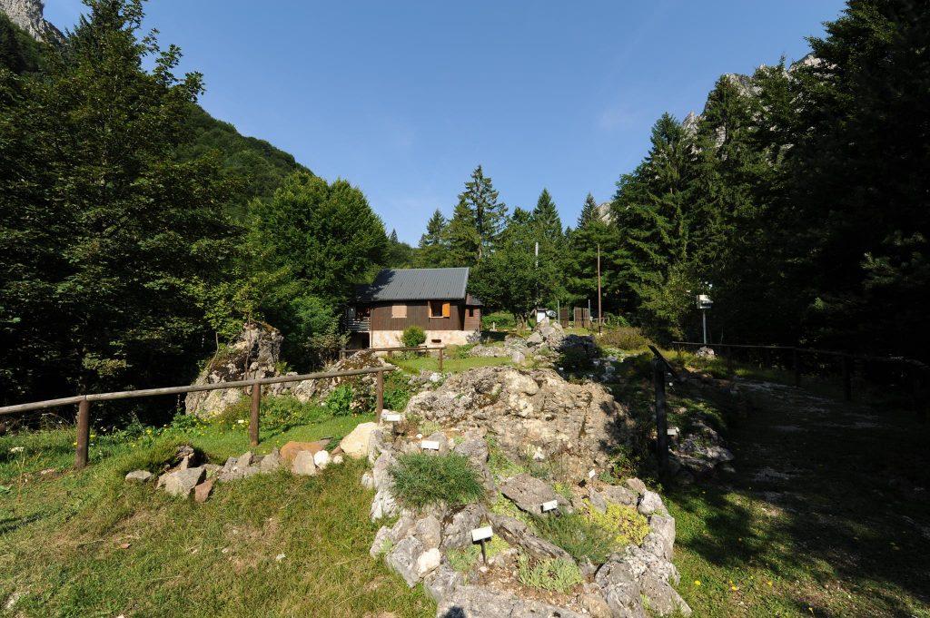 foto panoramica giardino alpino san marco