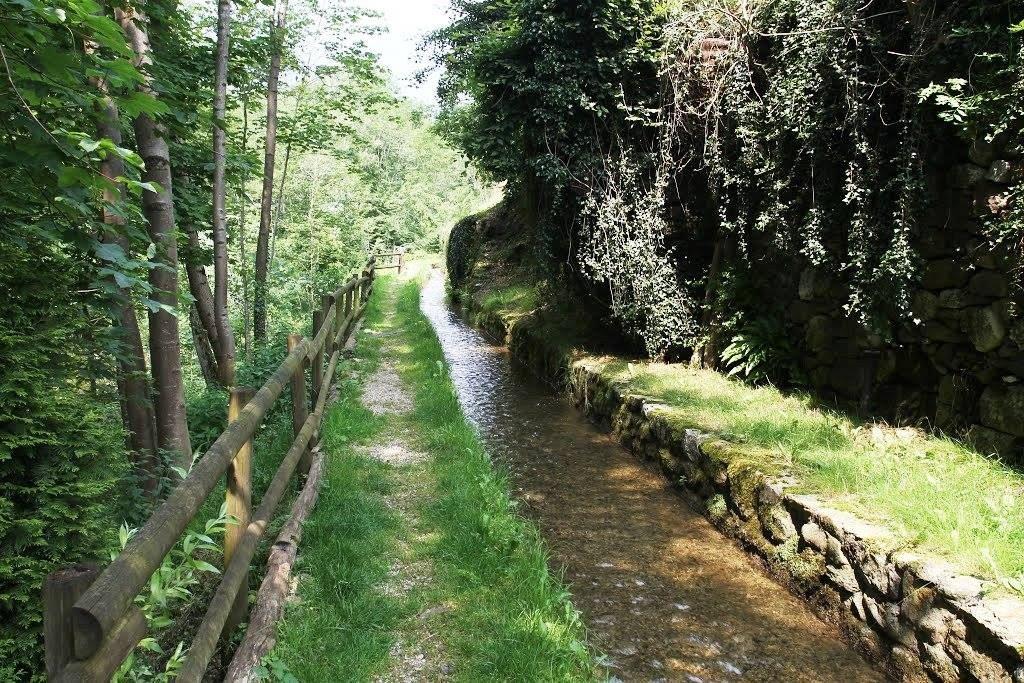 foto di parte del sentiero della via dell'acqua